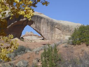 Cleft Arch